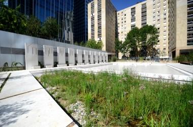 L'Epadesa donne vie au premier éco-jardin de La Défense