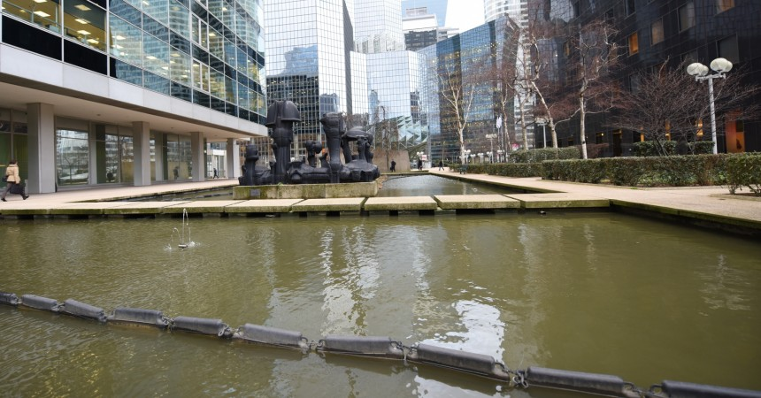 Un mal mystérieux frappe les poissons du bassin de la Coupole