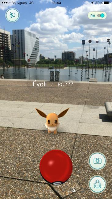 "Le Pokémon ""Evoli"" proche du bassin Takis - DR"