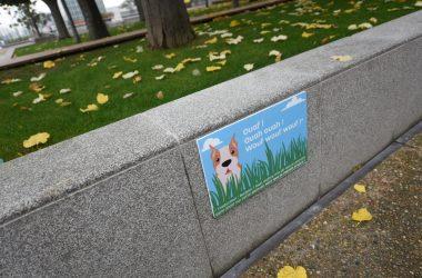 Ouaf ouah Wouf : le message de Defacto qui a du chien