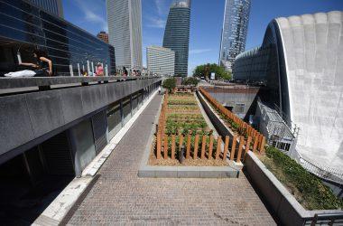 Un jardin partagé au pied du Cnit