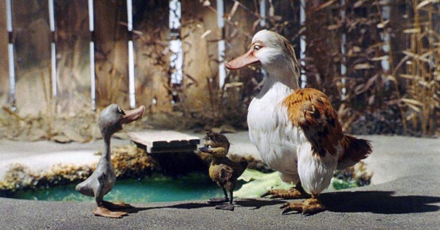 Le vilain petit canard ce dimanche à l'UGC des 4 Temps