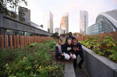 Avec le Potager de l'Arche des jeunes en difficultés s'impliquent dans le jardinage