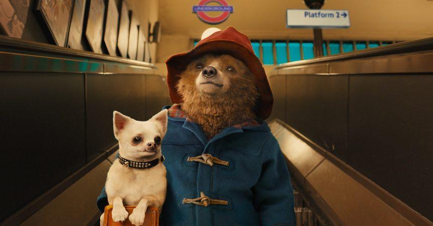 Le petit ours Paddington s'invite à l'UGC des 4 Temps