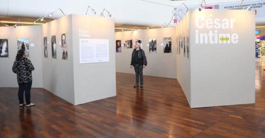 L'exposition en hommage au sculpteur César s'émancipe aux 4 Temps