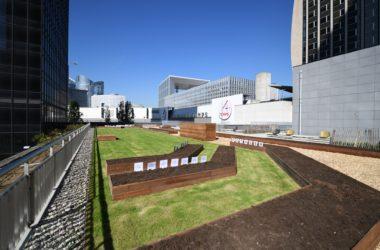 La Défense recherche des volontaires pour son nouveau jardin collaboratif